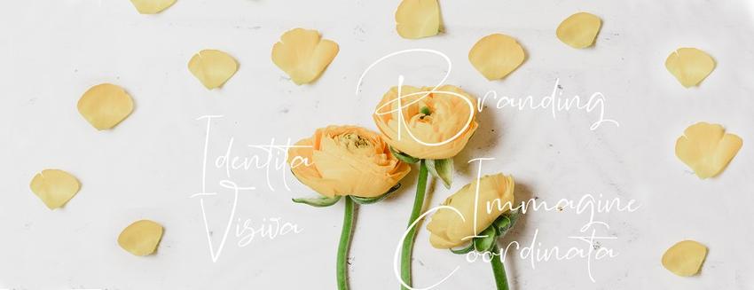 fiori dello stesso mazzo rappresentano branding, identità visiva ed immagine coordinata