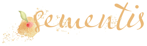 logo challenge sementis
